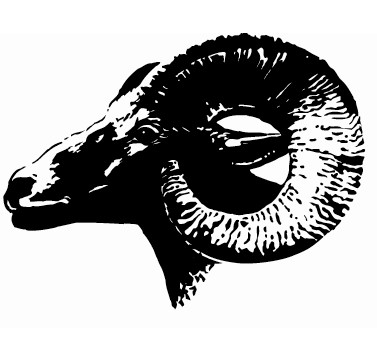 master.bighorn-logo.jpg