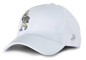 Iowa Hawkeyes Stretch Fit Herky Hat - Brady