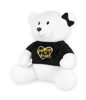 Teddy Bear Iowa