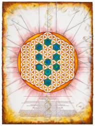 Divinity - Flower Of Life