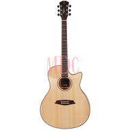 Sire Acoustic Guitar R3 GZ NT