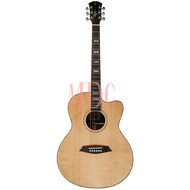 Sire Acoustic Guitar R7 GZ NT