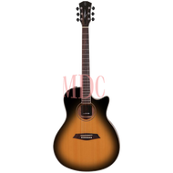 Sire Acoustic Guitar R3 GS VS