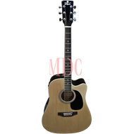 Pluto Acoustic Guitar Fishman HW41CE 101F NAT