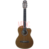 Pluto Acoustic Guitar HG39C 201 NAT
