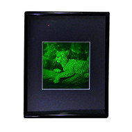 3D JAGUAR 2-Channel Hologram Picture (FRAMED), Collectible Photopolymer Type Film
