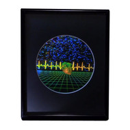 Heart w/ Heartline & Grid Large 3D Collectible Hologram Picture EMBOSSED Framed