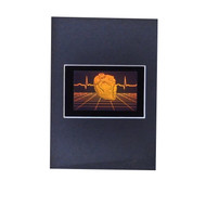 Polymer Heart with Grid PHOTOPOLYMER Hologram Picture Matted