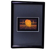 Polymer Heart with Grid PHOTOPOLYMER Hologram Picture Framed