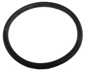 PENTAIR | O-ring with instructions | 79207100