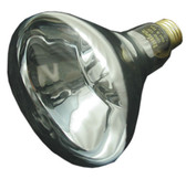 PUREX CHD/POOL STAR LIGHT | BULB, 12V 100W | 70513