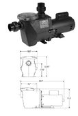 WATERWAY | ENERGY EFFICIENT - FULL RATED PUMPS - SINGLE SPEED | CHAMPE-115