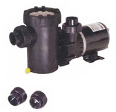 SPECK MODEL | TWO SPEED PUMPS - 3 FT. NEMA CORD - WITH SWITCH | 2071153449