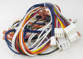 HAYWARD | WIRE HARNESS, MAIN -120V 9-20-04 & PRIOR | IDXLWHM1931