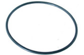 PENTAIR | O-RING | 39204100