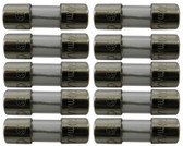HAYWARD   FUSE - ELECTRICAL, PACK OF 10   VRX100H