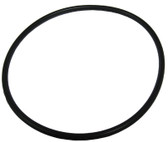 WATERWAY | SWING VALVE O-RING | 805-0239