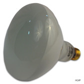 SUPER PRO | LIGHT BULB 300W 120V R40 MED BASE | R40FL300/HG