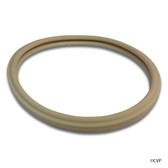 "PENTAIR | AMERICAN LIGHT GASKET FOR 8-3/8"" LENS, LARGE LIGHT 