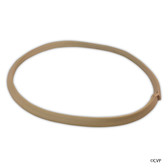 Pentair | Vac-Mate™ | Gasket, large, fits R36009 basket | R36002