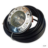 PENTAIR | SPA BRITE LIGHT 60W 120V 100' STAINLESS STEEL | 100 FOOT CORD | 78106200