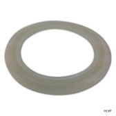 "Waterway | HEATER GASKET | 2-1/2"" (FOR UNION) 