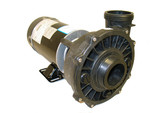 "Waterway | PUMP |  1.0HP 115V 2-SPEED 48 FRAME 60HZ 2"" EXECUTIVE 