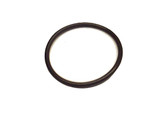Balboa Water Group | VALVE PART | DIVERTER VALVE STEM O-RING 1"