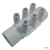 "Waterway Plastics | SP Manifold 2""s x 2""spg x(6)3/4""barb (use 55-270-1519) 