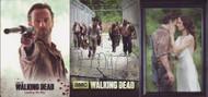 2014 Cryptozoic Walking Dead Season 3 Part 1 Mini Master Set (90)