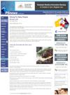 psnews-online.jpg