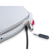 Photograph of Ohaus Anti-Theft Security Device for Devices w/ Integrated Security Slots attached to a device.