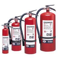 Badger 2.75 lb, 5.5 lb, 10 lb, and 20 lb Extra Regular dry chemical fire extinguishers.