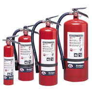 A group photograph of (left to right) Badger 2.75, 5.5, 10, and 20 pound Extra Regular dry chemical fire extinguishers.