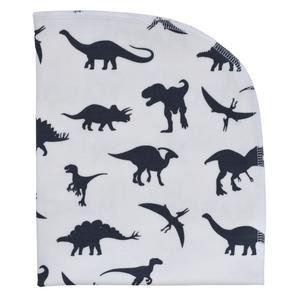 Organic Blanket - dinosaurs