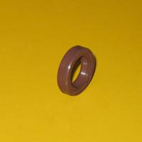 1389507 Seal, Oil