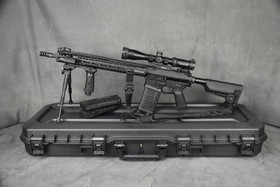 Stag Arms-10S .308