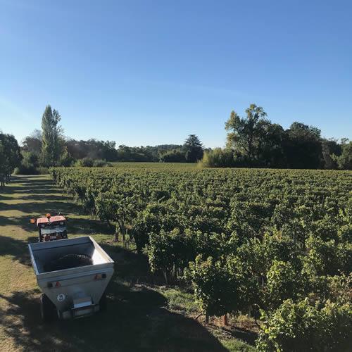 Bordeaux Supérieur 2018