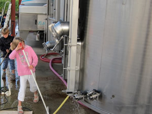 Cleaning up after pressing grapes
