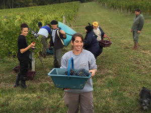 Bauduc harvest team