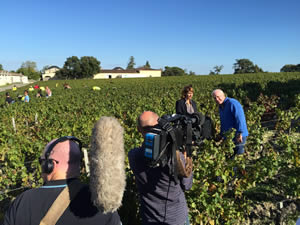 Filming in the vines in St-Estephe