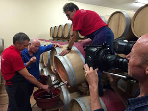 Racking the red in the barrels in St-Estephe