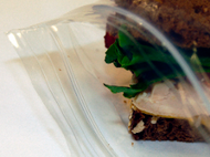 6x9 Clear Re-Lock Food bag