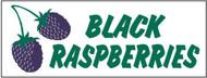 Black Raspberries banner 8' x 3'