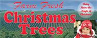 Farm Fresh Christmas Trees  15' x 6'