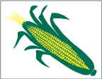 Marketeer Sign - Corn