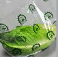 Super Clear Vented Lettuce bag - Medium