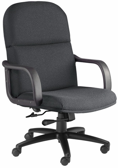 Executive Big and Tall Ergonomic Desk Chair [1801AG] -1