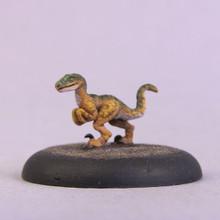 60005 - Tazjh Raptor Hatchling