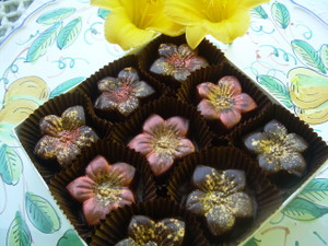 Our dark chocolate tiger lily's are will with 3 flavors of Salted Caramel all made with Fleur de Sel from Brittany France: Toasted Almond, Sicilian Pistachio,  Pure Salted Caramel